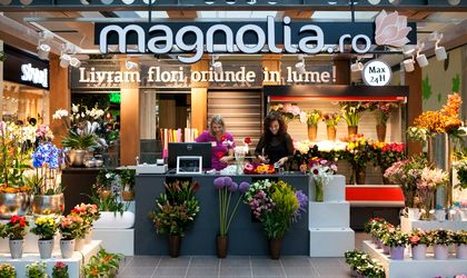 Floraria Magnolia Request Of Flowers Up By 180 Percent For