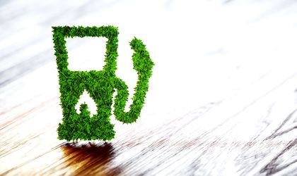 Sales of eco-friendly cars up 45 pct in Romania in Q1 2019